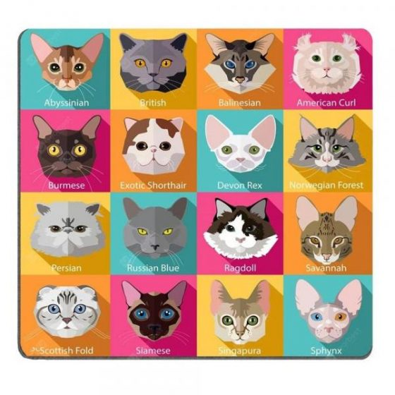 italiaunix-Set of Flat Popular Breeds of Cats Icons Personality Desings Gaming Mouse Pad  Gearbest